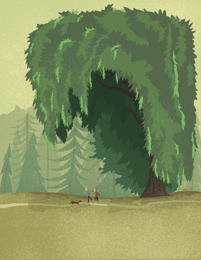 park_trees