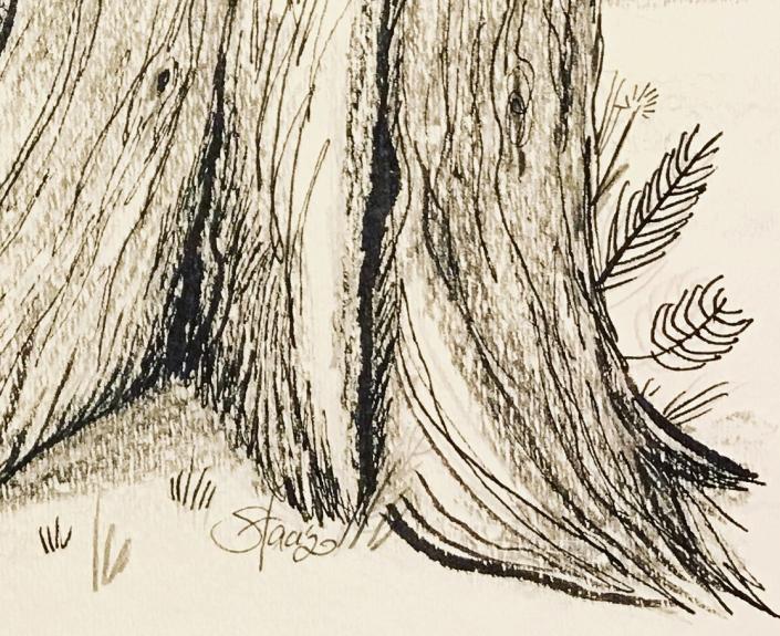 TreeTrunkCU2